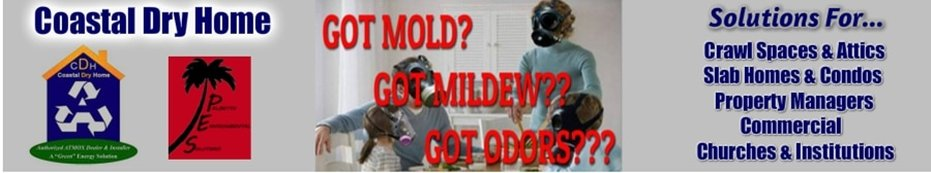 Coastal Dry Home Mold & Moisture Control Solutions            office: (843) 314 - 9195   mobile: (717) 817 - 9481